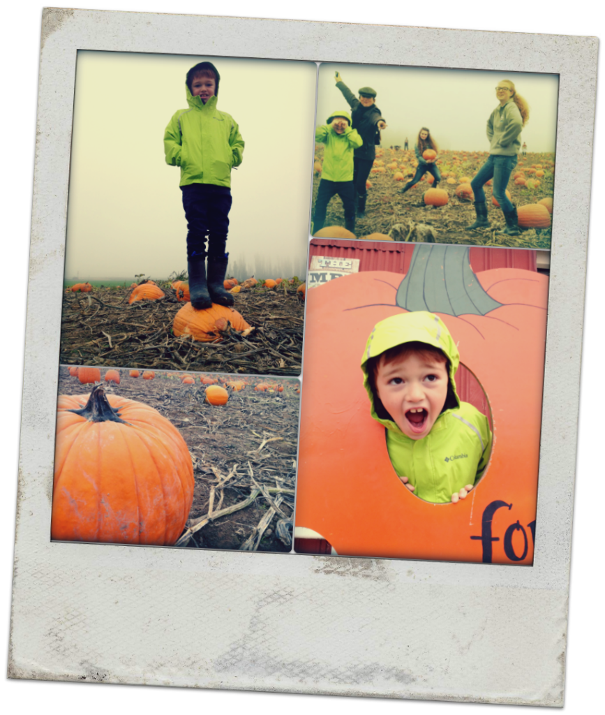 pumpkin patch polaroid